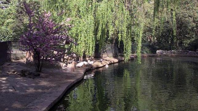 Parques desconocidos y sus secretos for Piscina fuente del berro
