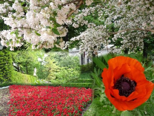 terrazas-jardin-botanico-madrid-533x400